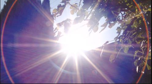Screen Shot 2014-11-21 at 6.31.19 PM